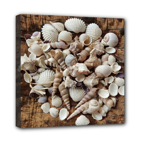 Tropical Sea Shells Collection, Copper Background Mini Canvas 8  x 8  by yoursparklingshop