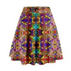 Psychic Auction High Waist Skirt by MRTACPANS