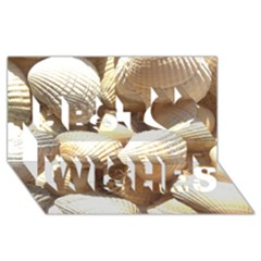 Tropical Exotic Sea Shells Best Wish 3d Greeting Card (8x4)
