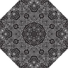 Petals In Black White, Bold Flower Design Hook Handle Umbrella (small) by Zandiepants