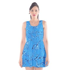 Thorny Abstract,ice Blue Scoop Neck Skater Dress