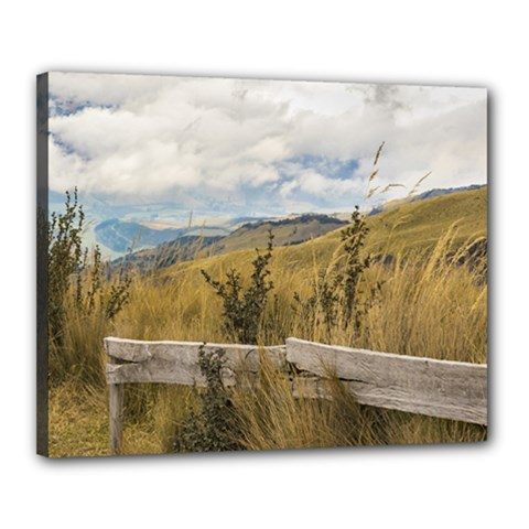 Trekking Road At Andes Range In Quito Ecuador  Canvas 20  X 16  by dflcprints