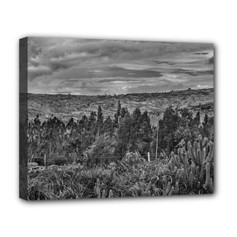 Ecuador Landscape Scene At Andes Range Deluxe Canvas 20  X 16   by dflcprints