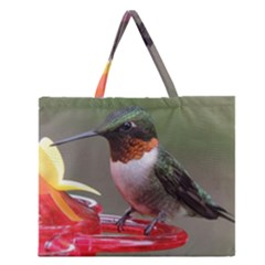 Male Ruby Throated Humming Bird Zipper Large Tote Bag by jackiepopp
