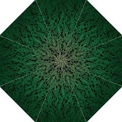 Green Ombre Feather Pattern, Black, Hook Handle Umbrella (medium) by Zandiepants