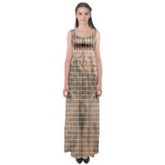 Owl Empire Waist Maxi Dress