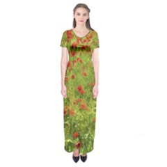 Poppy Vii Short Sleeve Maxi Dress by colorfulartwork