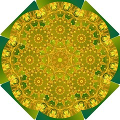 Yellow Green Abstract Wheel Of Fire Hook Handle Umbrellas (small) by DianeClancy