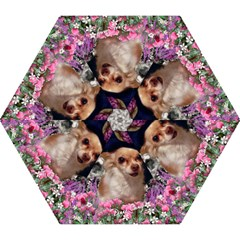 Chi Chi In Flowers, Chihuahua Puppy In Cute Hat Mini Folding Umbrellas by DianeClancy