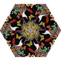 Freckles In Butterflies I, Black White Tux Cat Mini Folding Umbrellas by DianeClancy