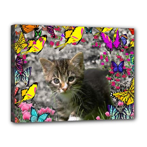 Emma In Butterflies I, Gray Tabby Kitten Canvas 16  X 12  by DianeClancy