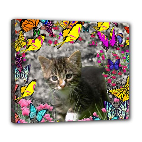 Emma In Butterflies I, Gray Tabby Kitten Deluxe Canvas 24  X 20   by DianeClancy