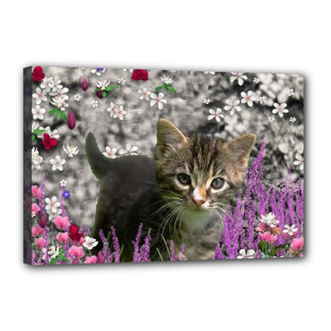 Emma In Flowers I, Little Gray Tabby Kitty Cat Canvas 18  X 12  by DianeClancy