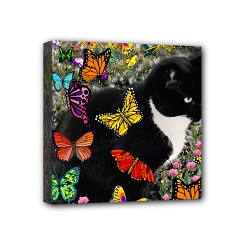 Freckles In Butterflies I, Black White Tux Cat Mini Canvas 4  X 4  by DianeClancy