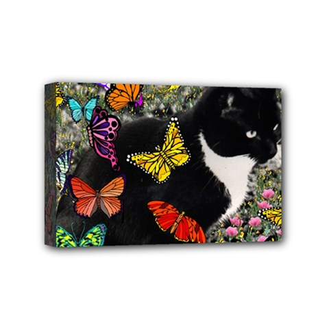 Freckles In Butterflies I, Black White Tux Cat Mini Canvas 6  X 4  by DianeClancy
