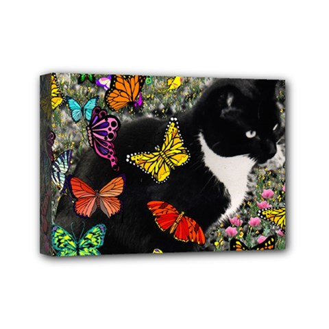 Freckles In Butterflies I, Black White Tux Cat Mini Canvas 7  X 5  by DianeClancy
