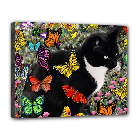 Freckles In Butterflies I, Black White Tux Cat Canvas 14  X 11  by DianeClancy