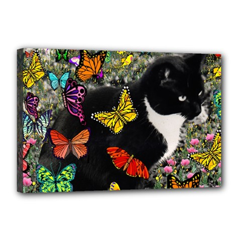 Freckles In Butterflies I, Black White Tux Cat Canvas 18  X 12  by DianeClancy