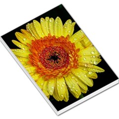 Yellow Flower Close Up Large Memo Pads by MichaelMoriartyPhotography