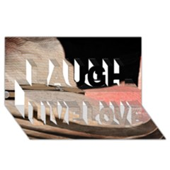 Straw Hats Laugh Live Love 3d Greeting Card (8x4)