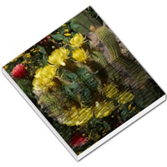 Cactus Flowers With Reflection Pool Small Memo Pads by MichaelMoriartyPhotography