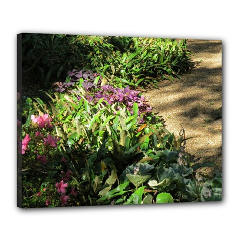 Shadowed Ground Cover Canvas 20  X 16  by ArtsFolly