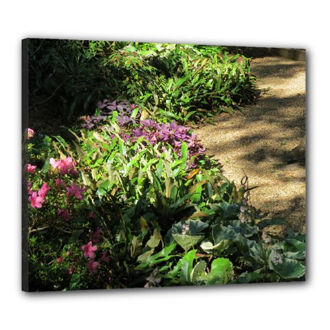 Shadowed Ground Cover Canvas 24  X 20  by ArtsFolly