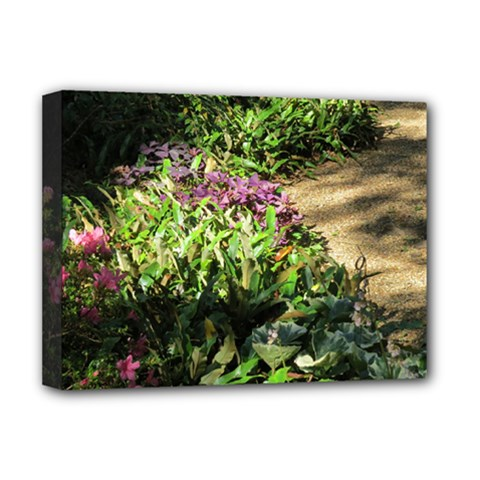 Shadowed Ground Cover Deluxe Canvas 16  X 12   by ArtsFolly