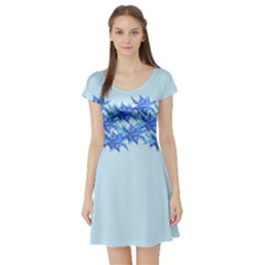 Elegant2 Short Sleeve Skater Dress by olgart
