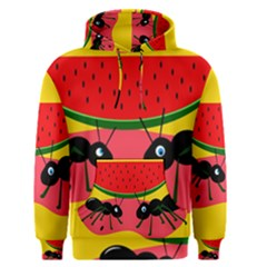 Ants And Watermelon  Men s Pullover Hoodie by Valentinaart