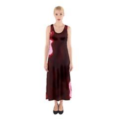 crimson sky Sleeveless Maxi Dress