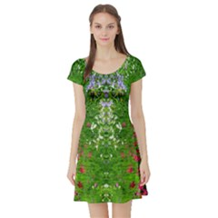 Floral Nature Short Sleeve Skater Dress by olgart