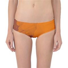 Orange and blue artistic pattern Classic Bikini Bottoms