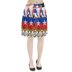 Coat Of Arms Of Chile  Pleated Skirt
