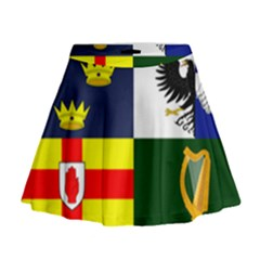 Four Provinces Flag Of Ireland Mini Flare Skirt
