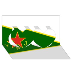 Flag Of The Women s Protection Units Twin Hearts 3d Greeting Card (8x4) by abbeyz71
