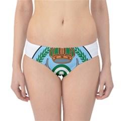 Emblem Of The Royal Saudi Air Force  Hipster Bikini Bottoms