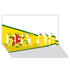 Flag Of The People s Protection Units Best Sis 3d Greeting Card (8x4) by abbeyz71