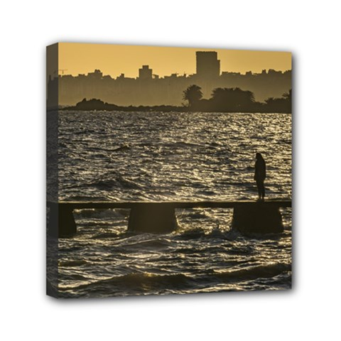 River Plater River Scene At Montevideo Mini Canvas 6  X 6  by dflcprints