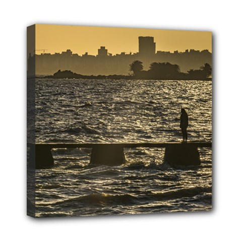 River Plater River Scene At Montevideo Mini Canvas 8  X 8  by dflcprints