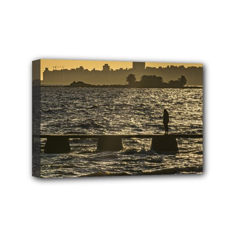 River Plater River Scene At Montevideo Mini Canvas 6  X 4  by dflcprints