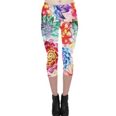 Colorful Succulents Capri Leggings