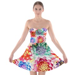 Colorful Succulents Strapless Bra Top Dress by DanaeStudio