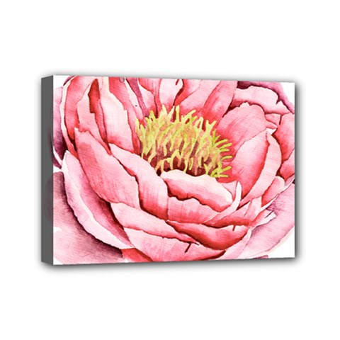 Large Flower Floral Pink Girly Graphic Mini Canvas 7  X 5  by CraftyLittleNodes