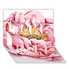 Large Flower Floral Pink Girly Graphic Take Care 3d Greeting Card (7x5) by CraftyLittleNodes