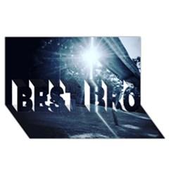 Spider Web Best Bro 3d Greeting Card (8x4) by lvbart
