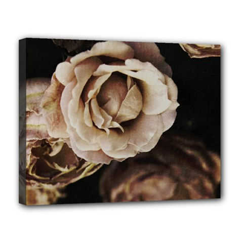 Roses Flowers Canvas 14  X 11  by vanessagf