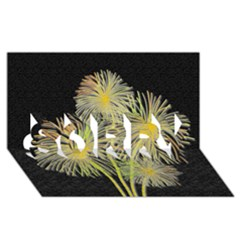 Dandelions Sorry 3d Greeting Card (8x4)