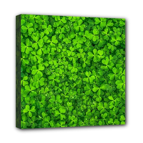 Shamrock Clovers Green Irish St  Patrick Ireland Good Luck Symbol 8000 Sv Mini Canvas 8  X 8  by yoursparklingshop