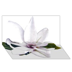 Magnolia Wit Aquarel Painting Art Twin Heart Bottom 3d Greeting Card (8x4) by picsaspassion